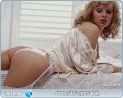 http://i3.imageban.ru/out/2014/02/09/fa720d13fadff4644d5114bf3d2036d1.jpg