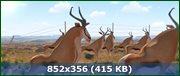 Кумба / Khumba (2013) BDRip-AVC | iPhone | D