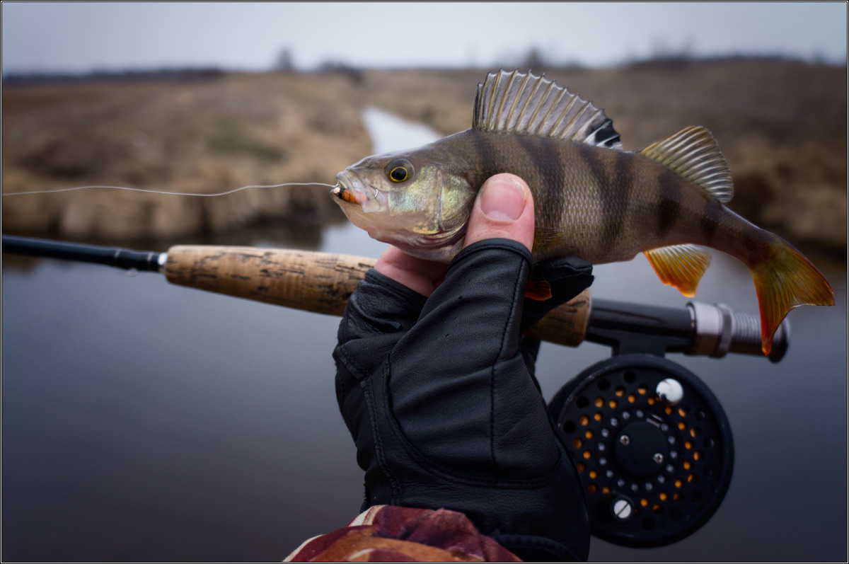 Рыбалка нахлыстом — снасти, техника ловли и приманки