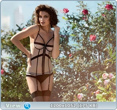 http://i3.imageban.ru/out/2014/03/02/f59fd38dad422a76caae704622dde0d7.jpg