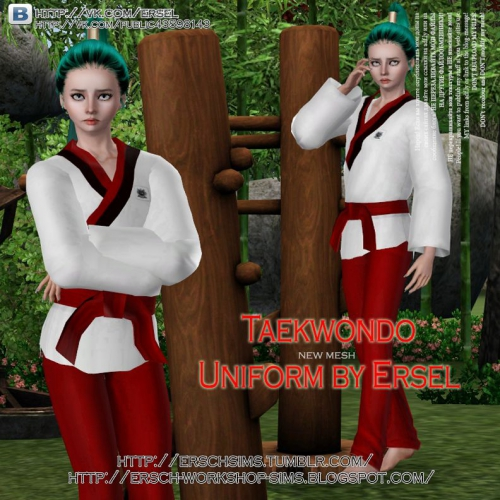 TAEKWONDO UNIFORM BY ERSEL