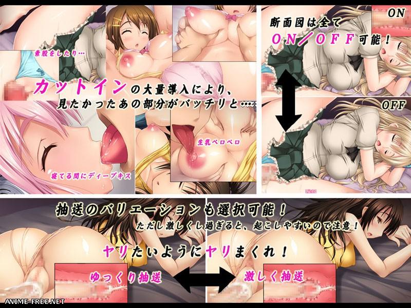 Rape You Goodnight 2 / Изнасилование спящих девушек 2 [2013] [Cen] [VN] [JAP] H-Game
