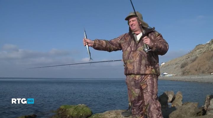 видео ловить саргана