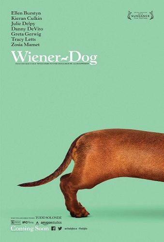 Wiener-Dog 2016 LiMiTED 1080p BluRay x264-SADPANDA