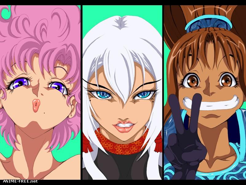 B.G.C [Battle Girl Collection] [2010] [Cen] [Animation] [JAP] H-Game