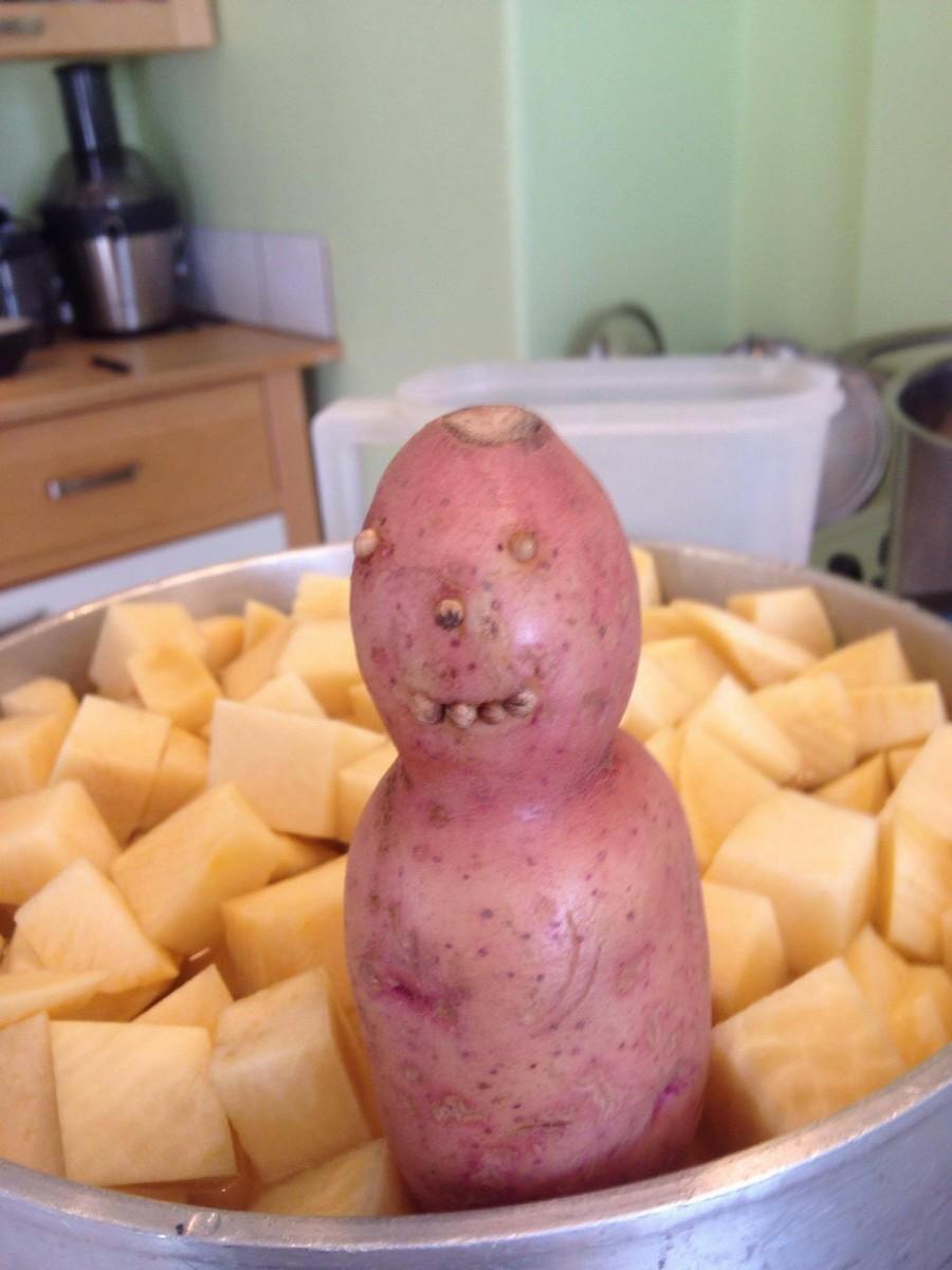 Не очень умная картошка