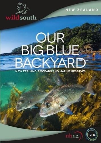 Океан на заднем дворе (1 сезон: 2 серии из 6) / Our Big Blue Backyard (2014/HDTVRip)