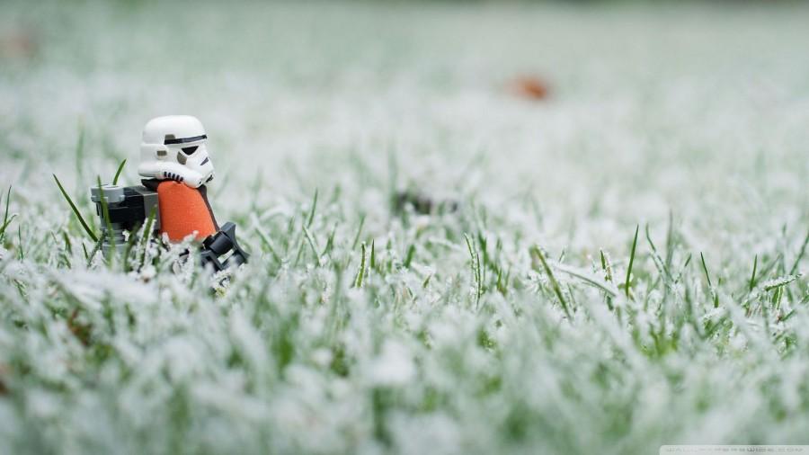 Штурмовик в траве
