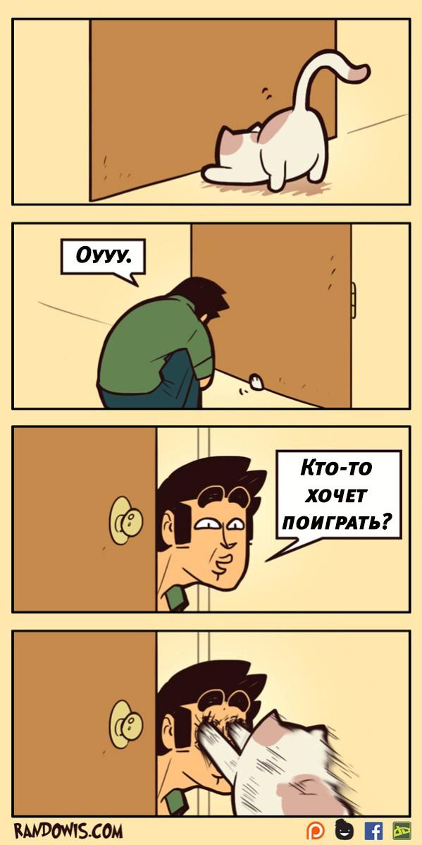 Про котов