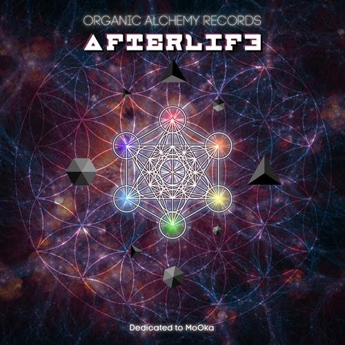 VA - Afterlife (2015) [FLAC|Lossless|tracks + .cue] <Psychedelic , Psy-Trance>