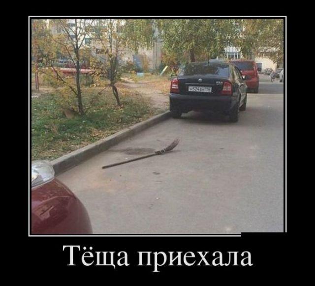 http://i3.imageban.ru/out/2017/05/23/95ece3270f3e2d12b8ee9927acd3937e.jpg