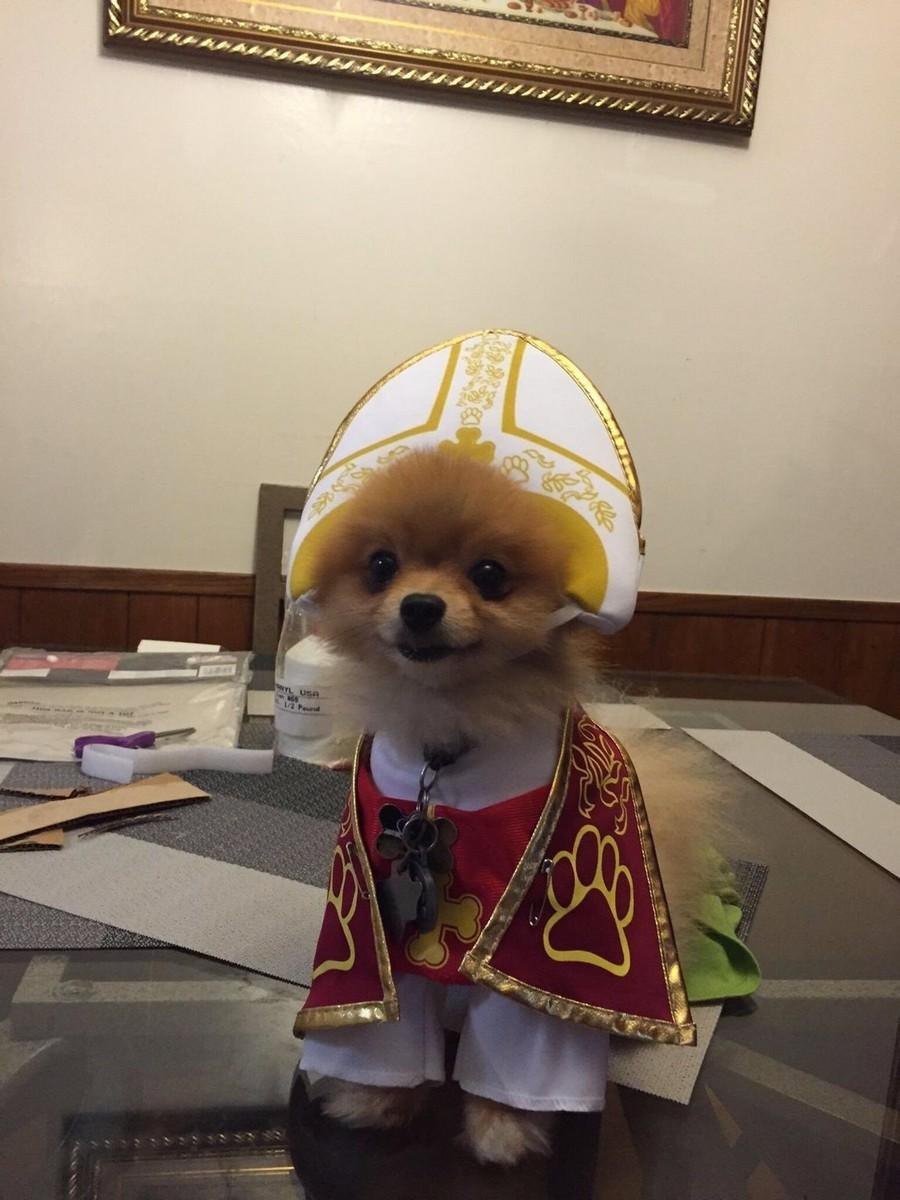 Выбрали нового папу