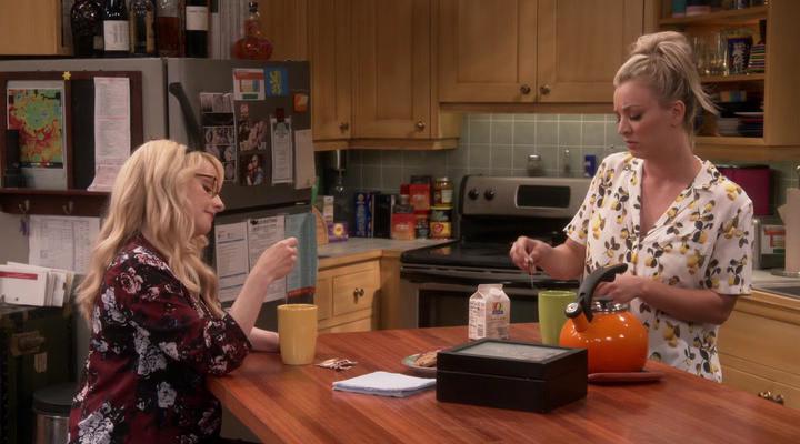 Изображение для Теория Большого Взрыва / The Big Bang Theory, Сезон 11, Серии 1-21 из 24 (2017-2018) HDTVRip | Кураж-Бамбей (кликните для просмотра полного изображения)