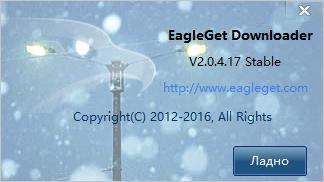 EagleGet 2.0.4.28 (2017) PC | + Portable