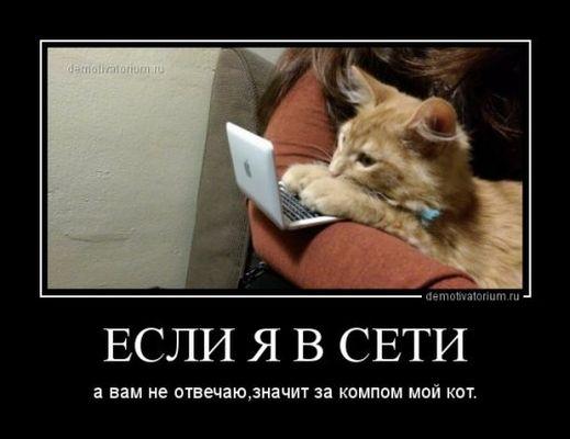 http://i3.imageban.ru/out/2017/10/31/3fb4ce338851f467f7bfafa4d7f602ca.jpg
