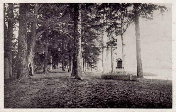 M?lestussammas Peeter I auks Kamperholmi saarel 1955-1963 Кривошеев Е.(NLM F 23=5); Narva Muuseum; Faili NLMF23_5 пер ФШ2.jpg