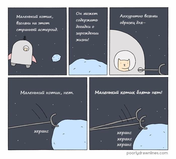 Маленький котик в космосе