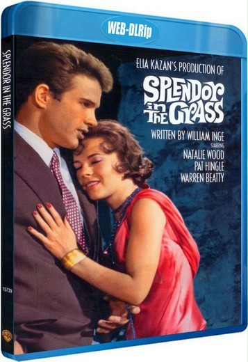 Великолепие в траве / Splendor in the Grass (1961) WEB-DLRip-AVC | P, P2, A