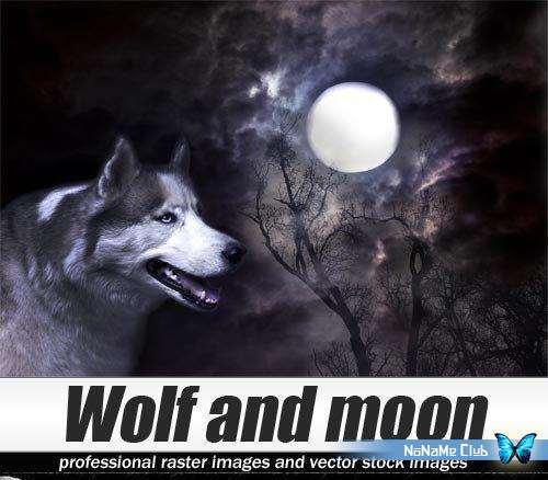 Растровый клипарт - Shutterstock - Wolf and moon [JPG]
