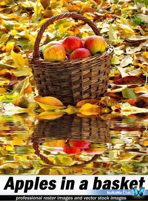 Растровый клипарт - Shutterstock - Apples in a basket [JPG]