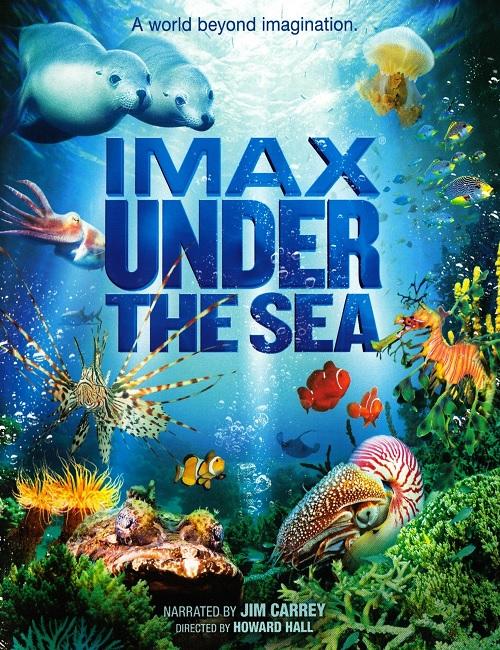 На глубине морской 3D / Under the Sea 3D (2009) BDRemux 1080р | 2D, 3D-Video | IMAX | A