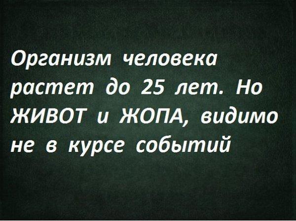 Сборка № 287