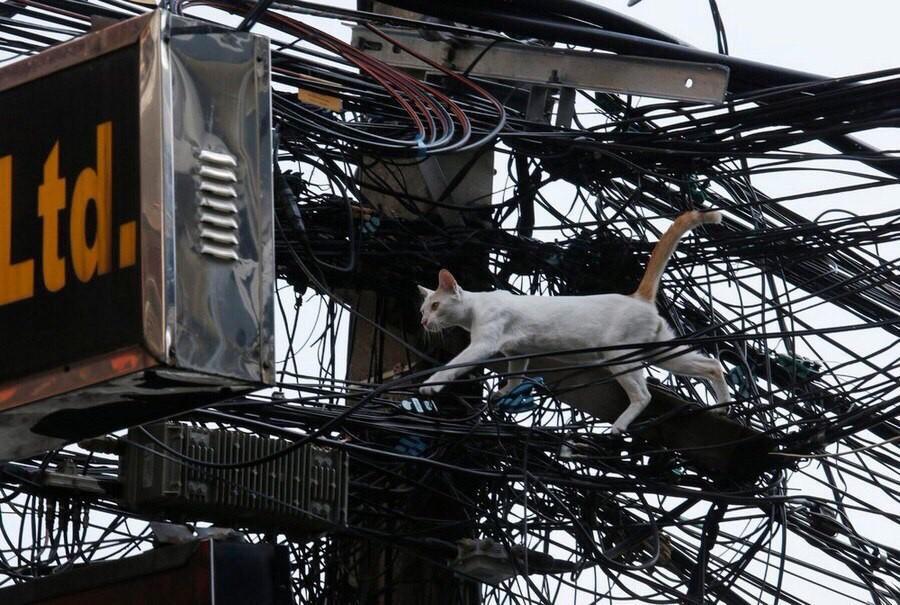 Небезопасный способ перемещаться по Тайланду