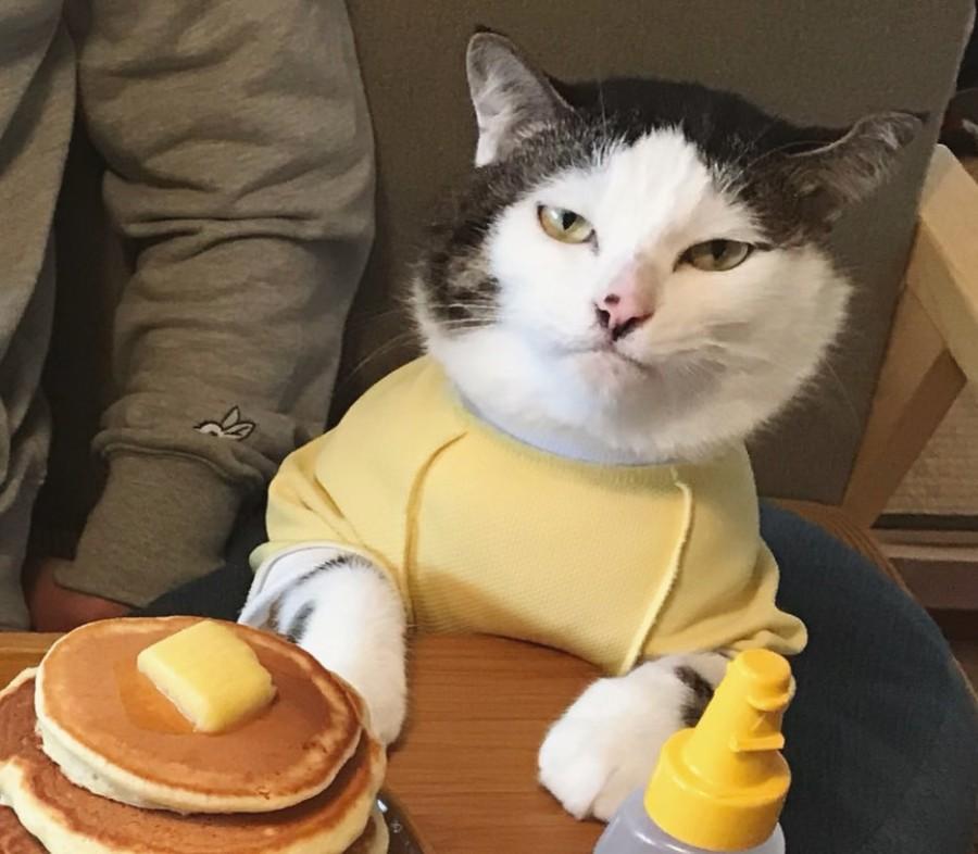 Когда устал ждать свой заказ