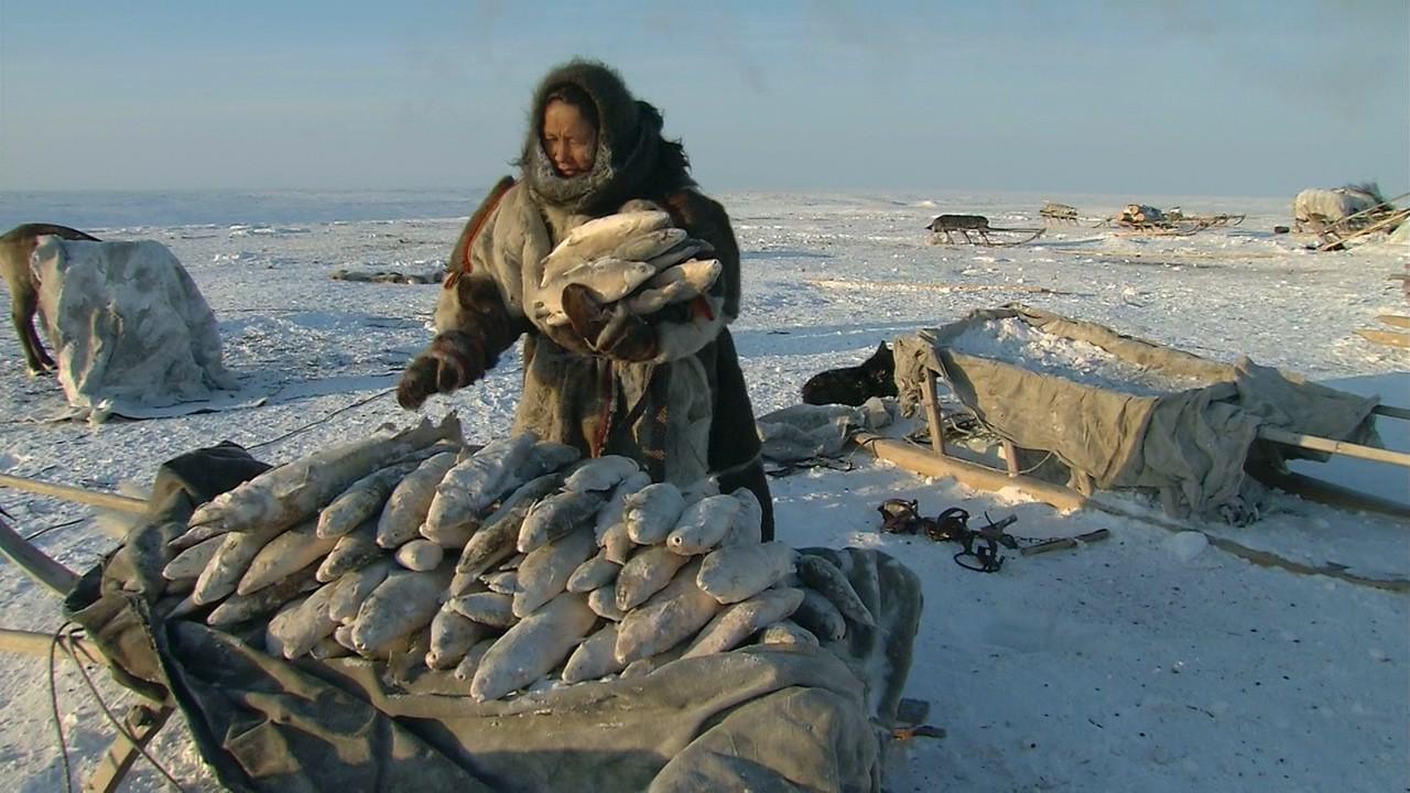Стать мужчиной в Сибири / Becoming a Man in Siberia (2008/BDRip) 720p, P1