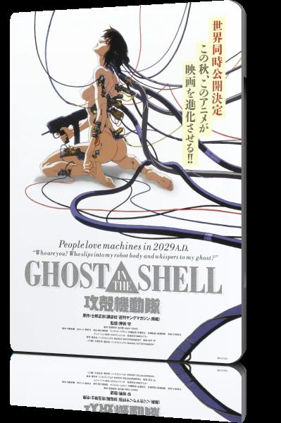Призрак в доспехах / Kôkaku Kidôtai / Ghost in the Shell (Мамору Осии / Mamoru Oshii) [1995, Япония, Великобритания, аниме, мультфильм, фантастика, BDRip-AVC] Dub + DVO + Original (jap) + Sub (rus, eng)