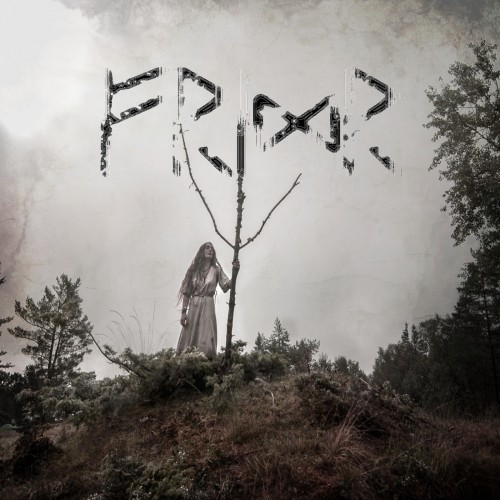 Danheim - Fridr (2018) [FLAC|Lossless|tracks] <Dark Folk, Dark Ambient>
