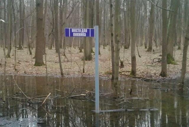 Место для пикника...