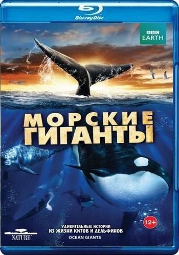 BBC: Морские гиганты / Ocean Giants (2011) BDRemux [VC-1/1080p] (Серии 1-3 из 3)