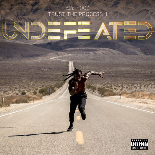 Ace Hood - Trust the Process II Undefeated (2018)