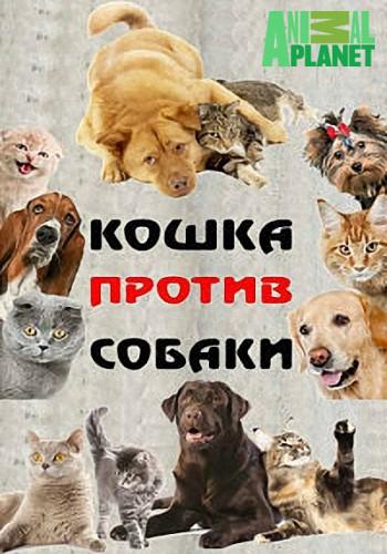 Animal Planet: Кошка против собаки / Cat Vs. Dog (2017) SATRip (сезон 1, эпизоды 1-7 из 7)