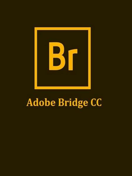 adobe bridge cc 2019 download