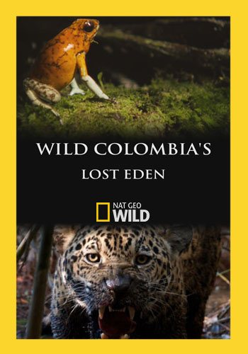 NGW: Потерянный рай Колумбии / Wild Colombia's Lost Eden (2016) HDTVRip [H.264/1080p-LQ]