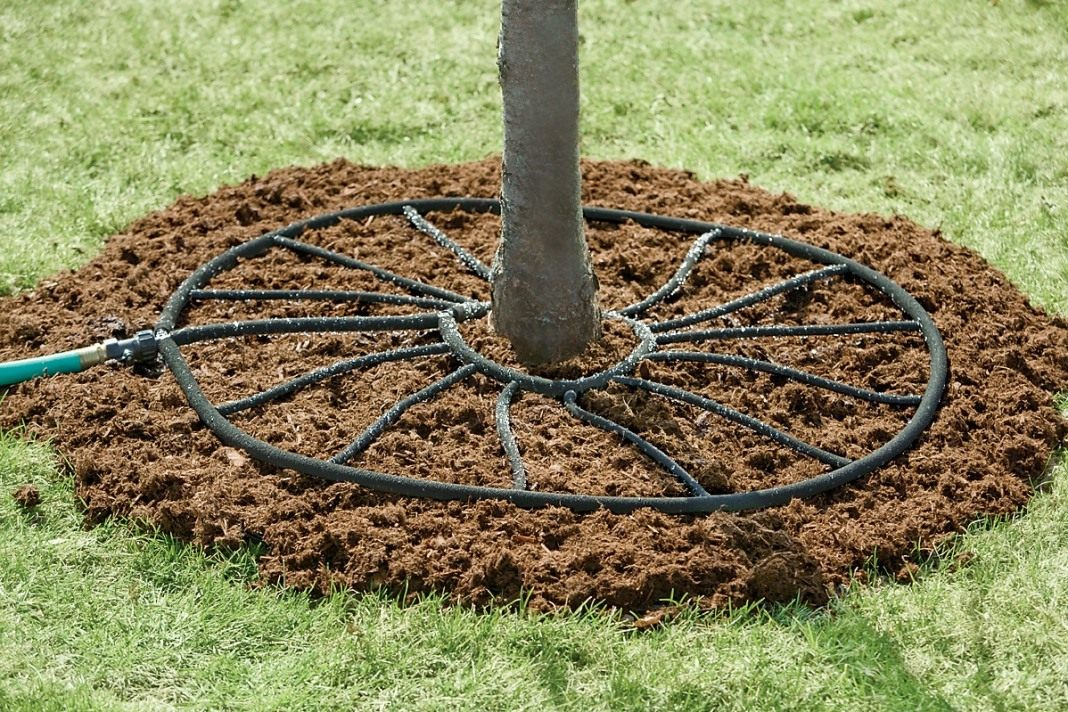 Система капельного полива деревьев