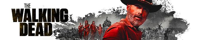 The Walking Dead S09 WEBRip 1080p DD5 1 H265-d3g