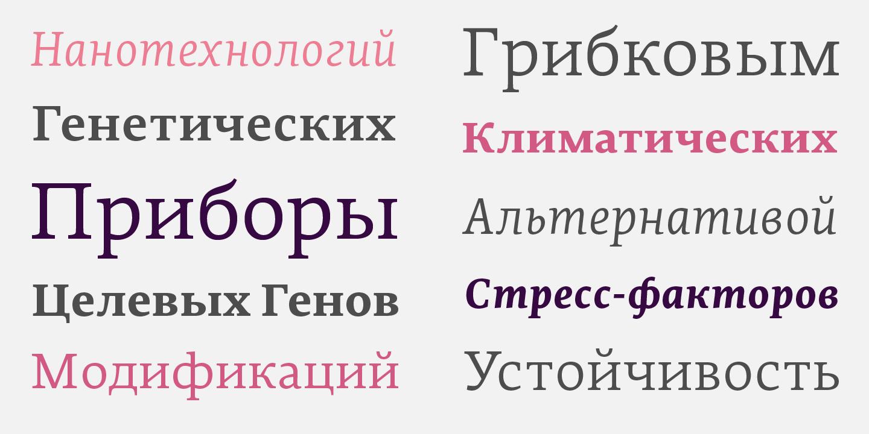 Шрифт Edit Serif Cyrillic