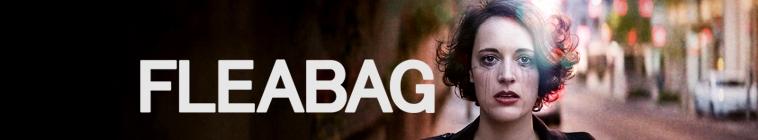 Fleabag S01-S02 1080p BluRay x265 HEVC 10bit AAC 2 0-SR