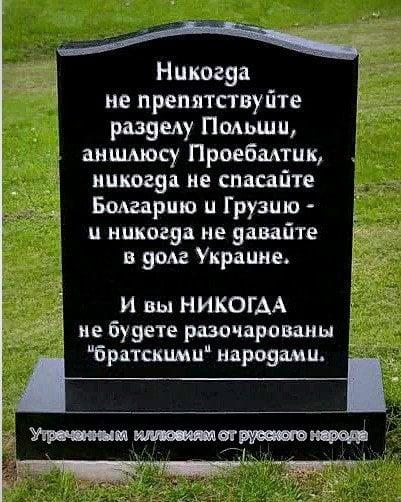 https://i3.imageban.ru/out/2019/12/08/96ca5672262cc5245dfb6e5363c9e6e7.jpg