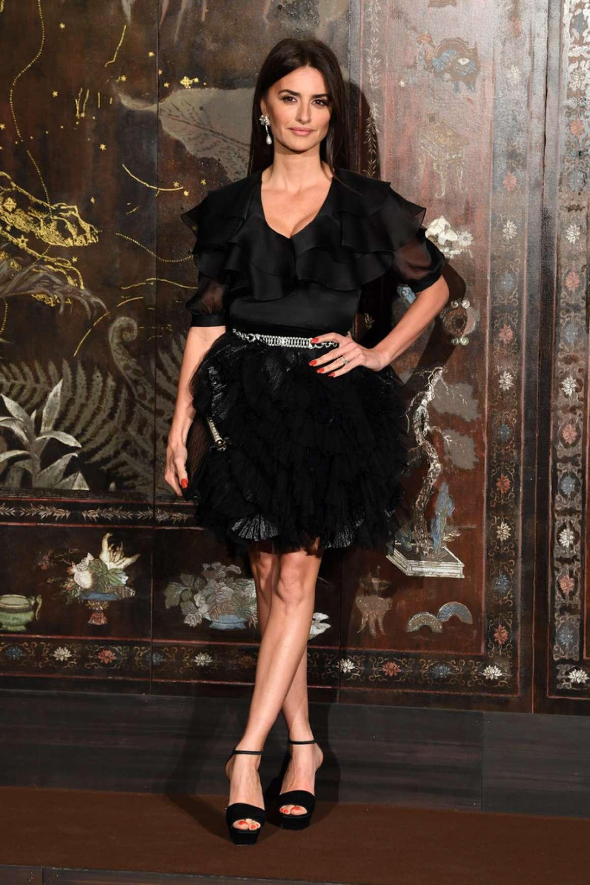 Penelope-Cruz---Chanel-Metiers-DArt-Fashion-Show-07.jpg