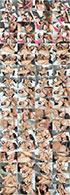 Avi Love & Dana DeArmond - Лесбийский анальный страпон 3 / Lesbian Anal Strap-On 3 / Strap On Dana (2018) HDRip-HEVC 720p