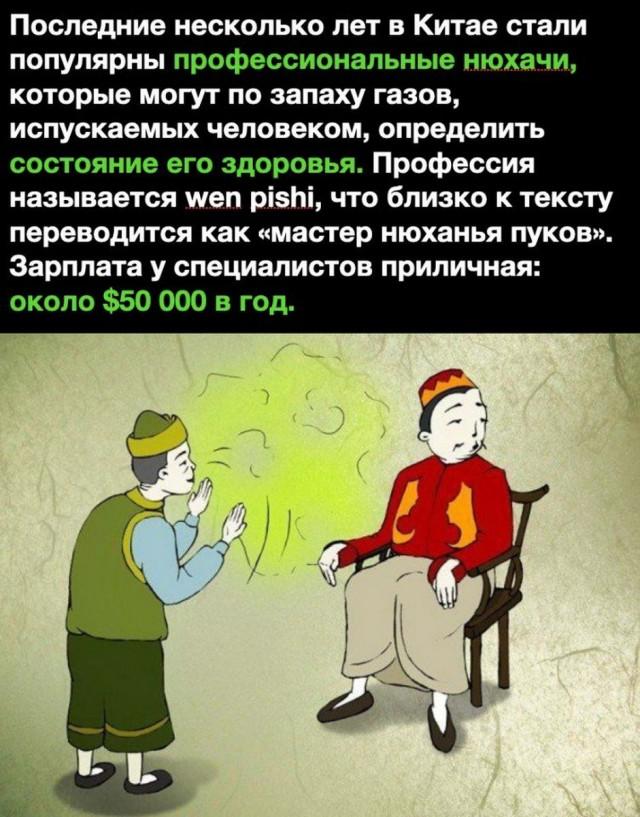 https://i3.imageban.ru/out/2020/09/01/37894dc8ced48058d9986f72df5f2bcf.jpg