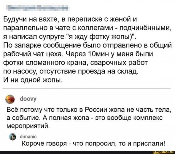 https://i3.imageban.ru/out/2020/09/01/d117ebaff48710d5a1746a227e152bb0.jpg