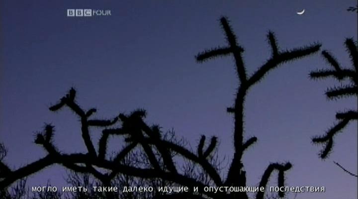 https://i3.imageban.ru/out/2021/07/18/d15a209b55f96bd74235ecedfb357295.jpg