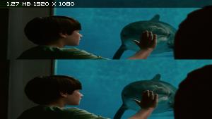 ������� �������� � 3� / Dolphin Tale 3D ������������ ����������