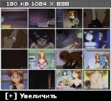 Неистовая и неудовлетворённая / Nageki no Kenkou Yuuryouji [3 из 3] [JPN;RUS;ENG] Anime Hentai