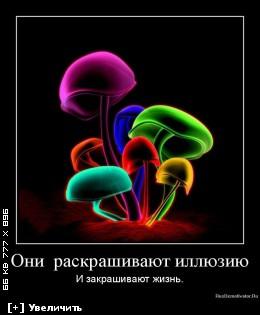 http://i3.imageban.ru/thumbs/2012.12.10/3b5ec01fe58a3f5be1a063807a0ddf92.jpg